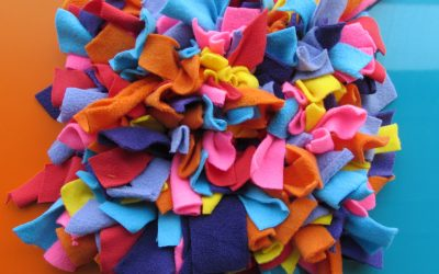 Why Your Dog Would Love A Snuffle Mat