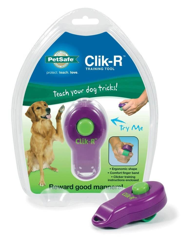 Clicker Tool For Dogs Recommended